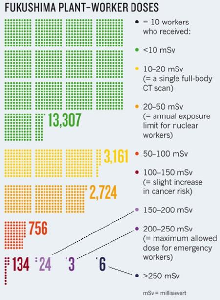 Fukushima dosis