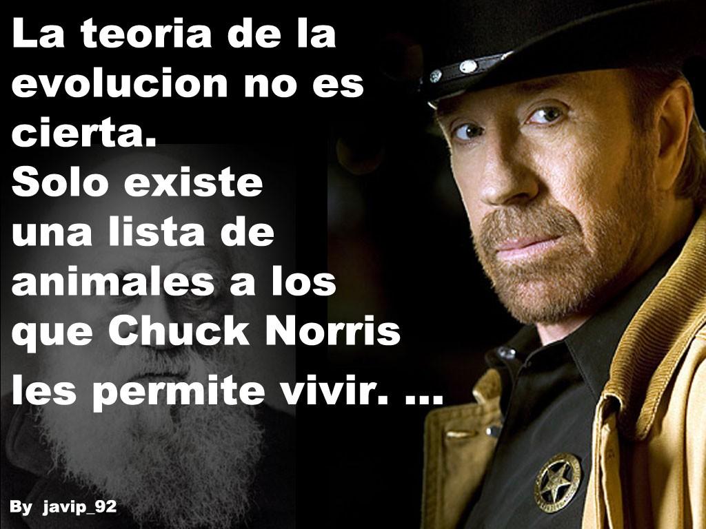 chuck-norris-teoria-evolucion