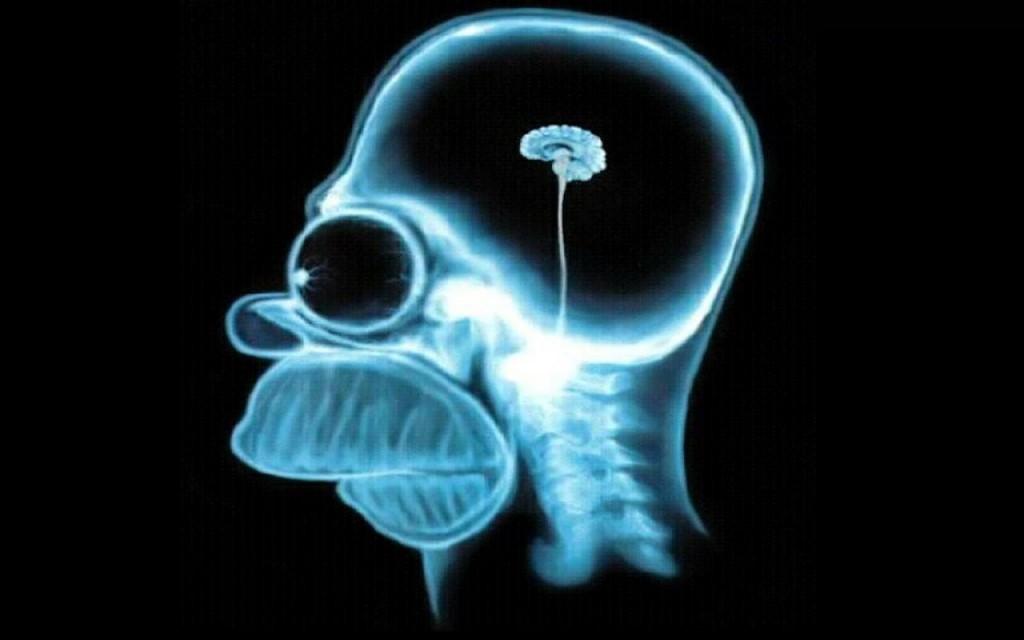Homer-simpson-brain,1280x800,18857